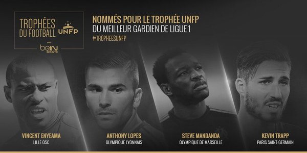 Ligue 1 Goalkeeper of the Year Nominees